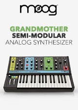 Moog Grandmother Semi-Modular Analog Synthesizer